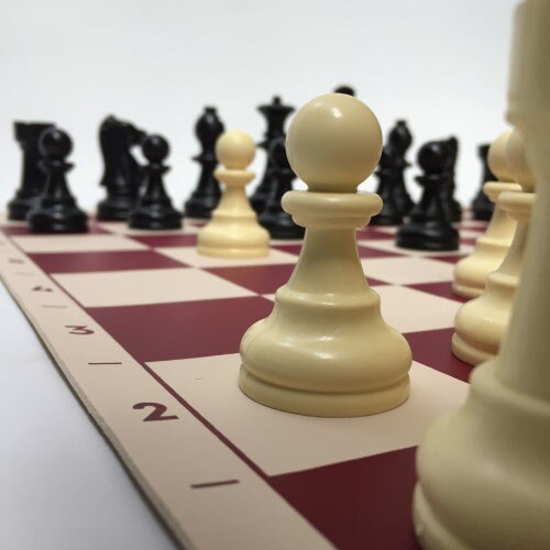 photo of New Chess 94mm (Shah Length) The Team of The Tournament